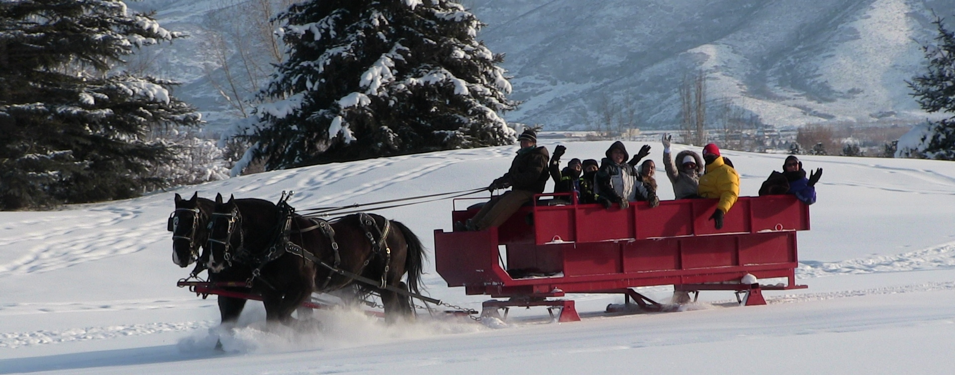 Winter Sleigh Ride At Homestead Resort in Heber, Utah.