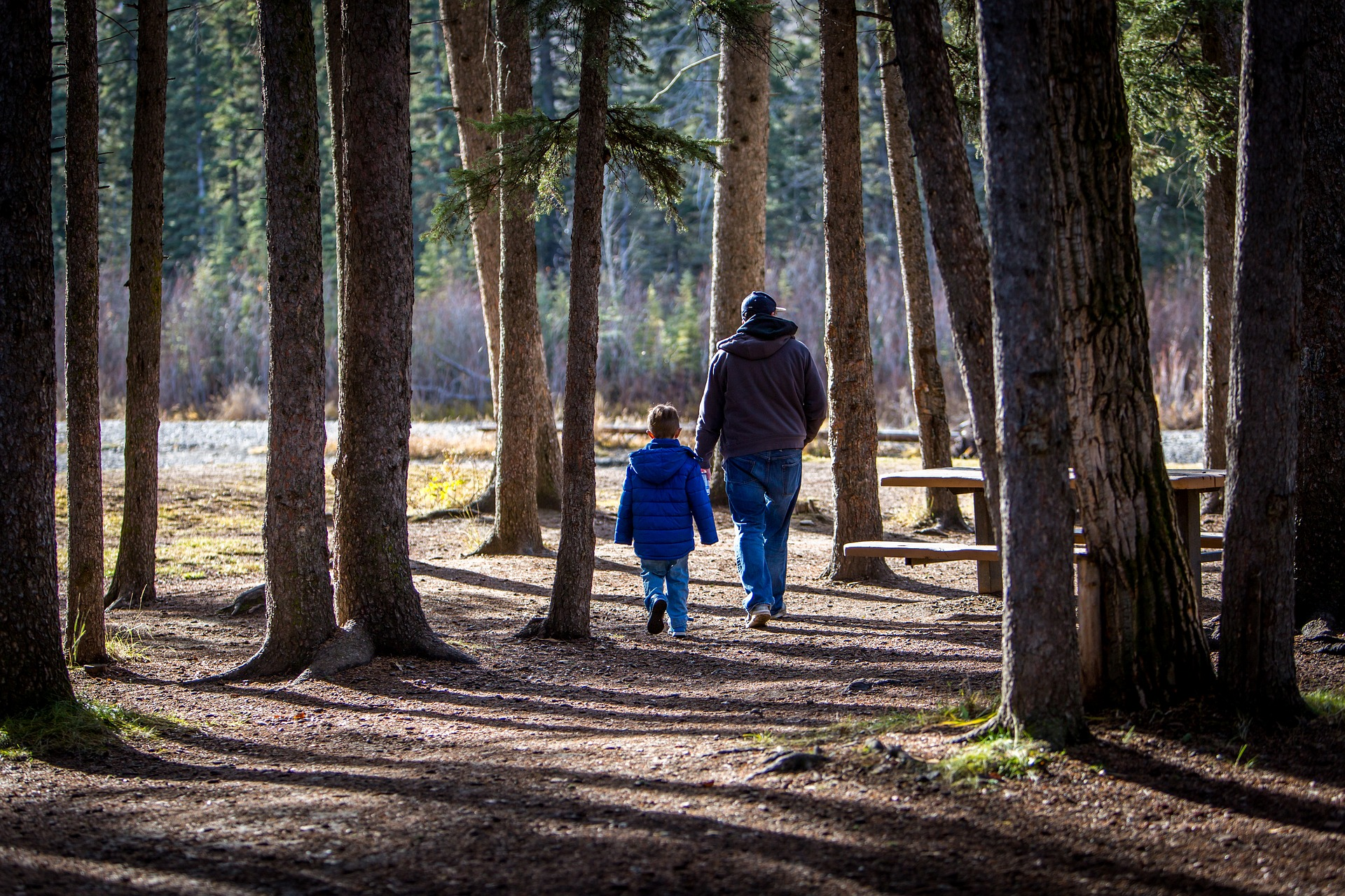 Father & Son Walking in the Forest near The Homestead