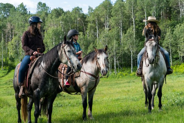 group horseback riding in mountains
